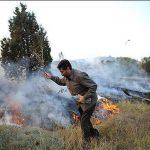 آتش سوزی مراتع بیستون مهار شد