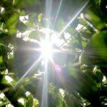 تجربه ۴۰ روز دمای «۴۰ درجهای» در تابستان امسال