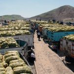 حدود ۵۴۲ میلیون دلار کالا از گمرکات کرمانشاه صادر شد