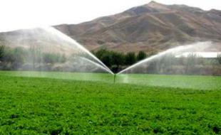 ۲۷ زمین چمن مصنوعی در مدارس کرمانشاه احداث می شود