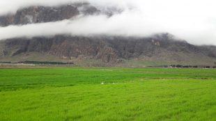 نمایی از کوه بیستون -عکاس سیدشهاب حسینی