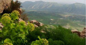 طبیعت زیبای کفراور-گیلانغرب ، عکاس: همایون رشیدی