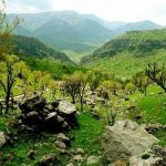 حفاظت از ۴۲هزار هکتار منطقه حفاظت شده توسط ۴ محیطبان