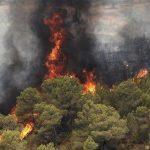 خطر آتشسوزی، بیخ گوش منابعطبیعی استان کرمانشاه؛ سالی بحرانی برای جنگلهای زاگرس پیشبینی میشود
