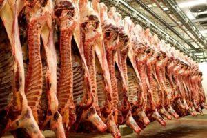 ایران در مرز خودکفایی تولید گوشت قرار دارد