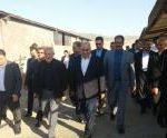 بازدید رئیس بنیاد مستعضفان کشور از مجتمع ۳هزار رأسی پرورش میش داشتی در اسلام آبادغرب