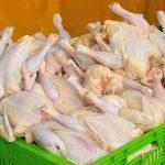 پاسکاری افزایش ناگهانی قیمت مرغ در کرمانشاه؛ افزایش قیمت نهادهها یا افزایش تلفات در مرغداریها؟