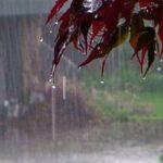 حجم بارش شب گذشته در هرسین پیش بینی نشده بود