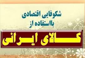 جهت رشد اقتصادی و اشتغال پایدار باید ، فرهنگ خرید کالای ایرانی نهادینه شود